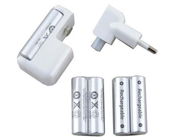 Купить -  Зарядное устройство Apple Battery Charger (MC500ZM/A)