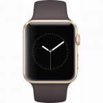 Фото Apple Apple Watch Series 1, 42mm Gold Aluminium Case with Cocoa Sport Band (MNNN2)