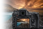 Фото -  NIKON D500 + AF-S 16-80mm F/2.8-4E ED VR