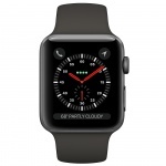 Фото Apple Apple Watch Series 3 (GPS + Cellular) 42mm Space Gray Aluminum Case with Gray Sport Band (MR2X2)