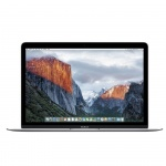 Фото - Apple Apple MacBook 12' (Core M 1.3GHz /8 GB/256Gb) Silver (Z0QS0)