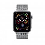 Фото Apple Apple Watch Series 4 (GPS + Cellular) 40mm Stainless Steel Case with Milanese Loop (MTUM2)