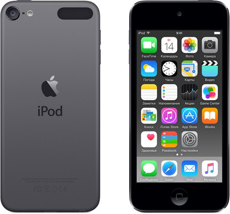 Купить -  Apple A1574 iPod Touch 64GB Space Gray (MKHL2RP/A)